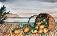 Agrumi a Palermo