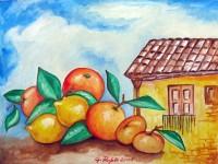 Frutta tra i tetti