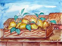 Gabbietta di limoni tra i tetti